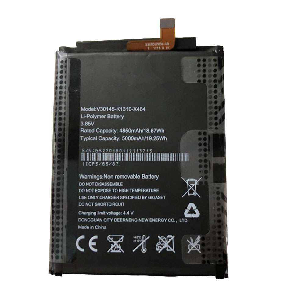 Gigaset V30145-K1310-X464
